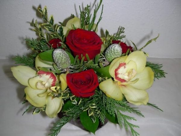roses orchid in a cube vase